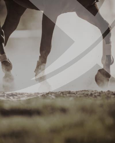 equestrian_arenas